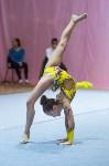 Соревнования по художественной гимнастике 31 марта-1 апреля 2016 года, Фото: 66