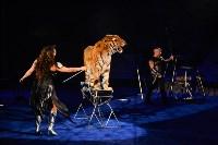 Цирковое шоу, Фото: 136