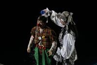 В Тульском цирке прошла премьера аква-шоу, Фото: 42