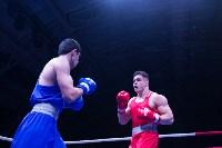 В Туле прошли финальные бои Всероссийского турнира по боксу, Фото: 105