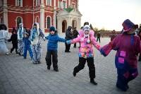 В Тульском кремле открылась новогодняя елка, Фото: 8