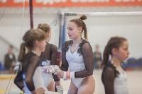 Первенство ЦФО по спортивной гимнастике, Фото: 141