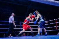 В Туле прошли финальные бои Всероссийского турнира по боксу, Фото: 10