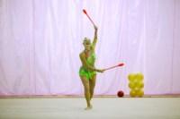 Межрегиональный турнир по художественной гимнастике — «Осенний вальс». 6-7 сентября 2014, Фото: 1