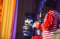 Театр кошек в ГКЗ, Фото: 52