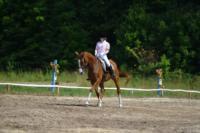 В Ясной поляне стартовал турнир по конному спорту, Фото: 39