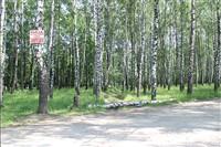 Окопы в Пролетарском парке, Фото: 4