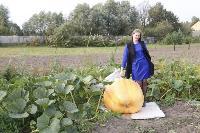 Гигантские тыквы из урожая семьи Колтыковых, Фото: 18