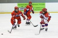 I-й Кубок главы администрации Новомосковска по хоккею., Фото: 103