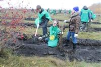 В музее-заповеднике «Куликово поле» высадили 6 тысяч деревьев, Фото: 11