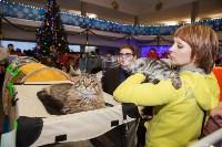 В Туле прошла выставка «Пряничные кошки» , Фото: 66