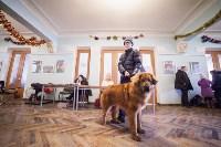 Выставка собак в Туле, 29.11.2015, Фото: 45