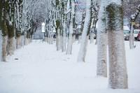 Тула после снегопада. 23.12.2014, Фото: 24