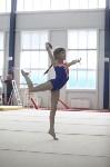 Соревнования по спортивной гимнастике на призы Заслуженных мастеров спорта , Фото: 58
