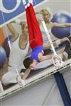 Первый этап Всероссийских соревнований по спортивной гимнастике среди юношей - «Надежды России»., Фото: 21