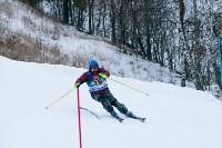 I-й этап Кубка Тулы по горным лыжам и сноуборду., Фото: 43