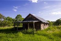 Летний день в Ясной Поляне, Фото: 11