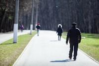 Солнечный день в Белоусовском парке, Фото: 12