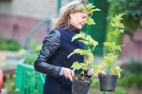 Тульская городская УК сажает деревья, Фото: 11