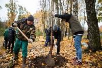 В Центральном парке Тулы появился сосновый бор «Слободы», Фото: 13