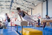 Мужская спортивная гимнастика в Туле, Фото: 28