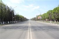 Тульская Федерация профсоюзов провела митинг и первомайское шествие. 1.05.2014, Фото: 28