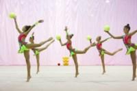 Межрегиональный турнир по художественной гимнастике — «Осенний вальс». 6-7 сентября 2014, Фото: 16