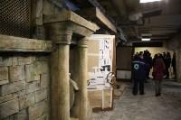 Новое здание тульской экзотариума, Фото: 48
