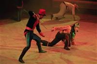 Цирк «Вива, Зорро!» в Туле , Фото: 23
