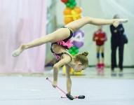 Кубок общества «Авангард» по художественной гимнастики, Фото: 105