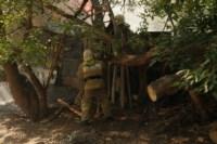 Пожар около Фролова, Фото: 4