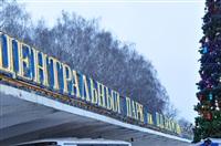 Елка в Туле, Фото: 110