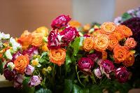 Цветы , Фото: 14