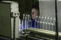 Стекольный завод в Алексине, Фото: 82