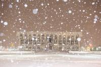 Сказочная зима в Туле, Фото: 19