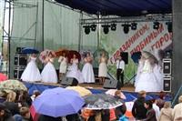 День Тульской области, Фото: 4