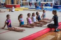 Тульские гимнастки готовятся к первенству России, Фото: 29