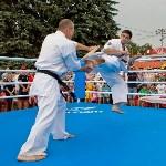 Турнир по боксу в Алексине, Фото: 23