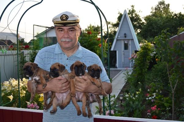 """"""" Четыре щенка и капитан """"."""