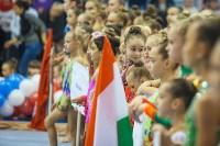 Открытый кубок региона по художественной гимнастике, Фото: 63