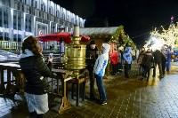 В Туле завершились новогодние гуляния, Фото: 66