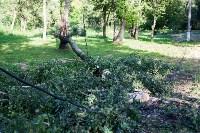 В Баташевском саду из-за непогоды упали вековые деревья, Фото: 16