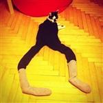Коты в колготках-2, Фото: 5