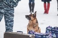 """""""Студенческий десант"""" - 2017., Фото: 27"""