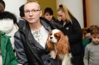 """Выставки собак в ДК """"Косогорец"""", Фото: 22"""