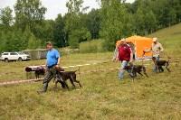 Выставка охотничьих собак под Тулой, Фото: 77