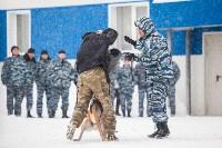 """""""Студенческий десант"""" - 2017., Фото: 22"""