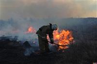 Сразу в нескольких районах Тульской области загорелись поля, Фото: 7