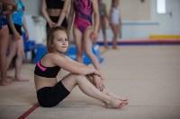 Тульские гимнастки готовятся к первенству России, Фото: 21
