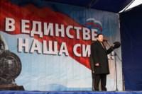 Митинг в честь Дня народного единства, Фото: 93